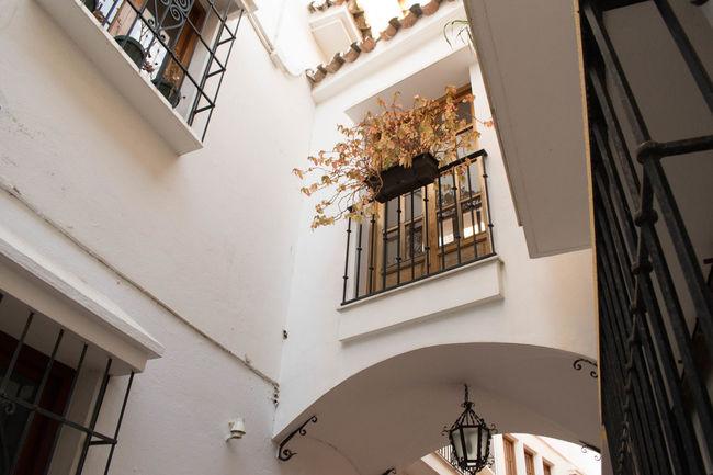 Paths Adventures Hidden Gems  Views View EyeEm Best Shots Architecture Adventure Townlife Balcony Upward View Journeyphotography Archway Archways