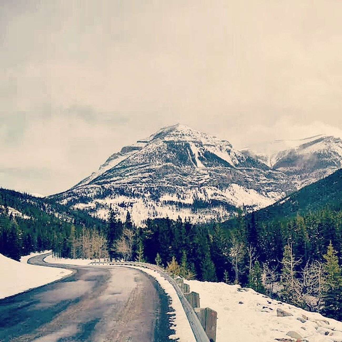 Gotta love the roads up north. Picture taken in Waterton - AB - Canada. April 2014. Explorecanada Explorealberta Explorewaterton Alberta Albertatourism Traveltherockies Travelcanada Travelalberta Travelwaterton Tourismalberta Canadatourism Ab Yql Travel Backpacking Hiking Hike Snow Road Beautiafulroads Rockymountains Greatwhitenorthcollective Winterisbetter Keepexploring Waterton greatcanada canada