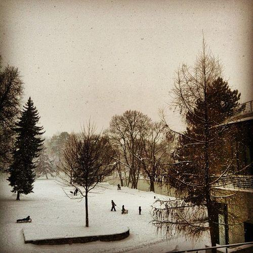 Winter2013 Weimar Weimarhallenpark