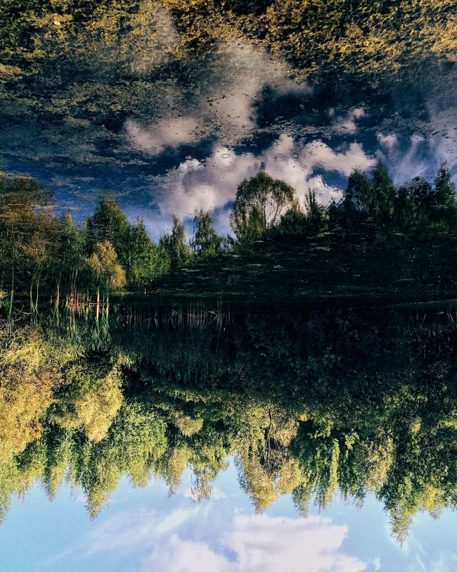 Reflection Nature Water Reflection Lake Lake Tree Beauty In Nature Outdoors No People Landscape Sky Sunset Scenics Astronomy Star - Space Day Russia Kazan Tatarstan Mirrored