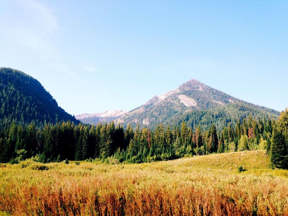 Beautiful stock photos of mountains, Beauty In Nature, Color Image, Copy Space, Day