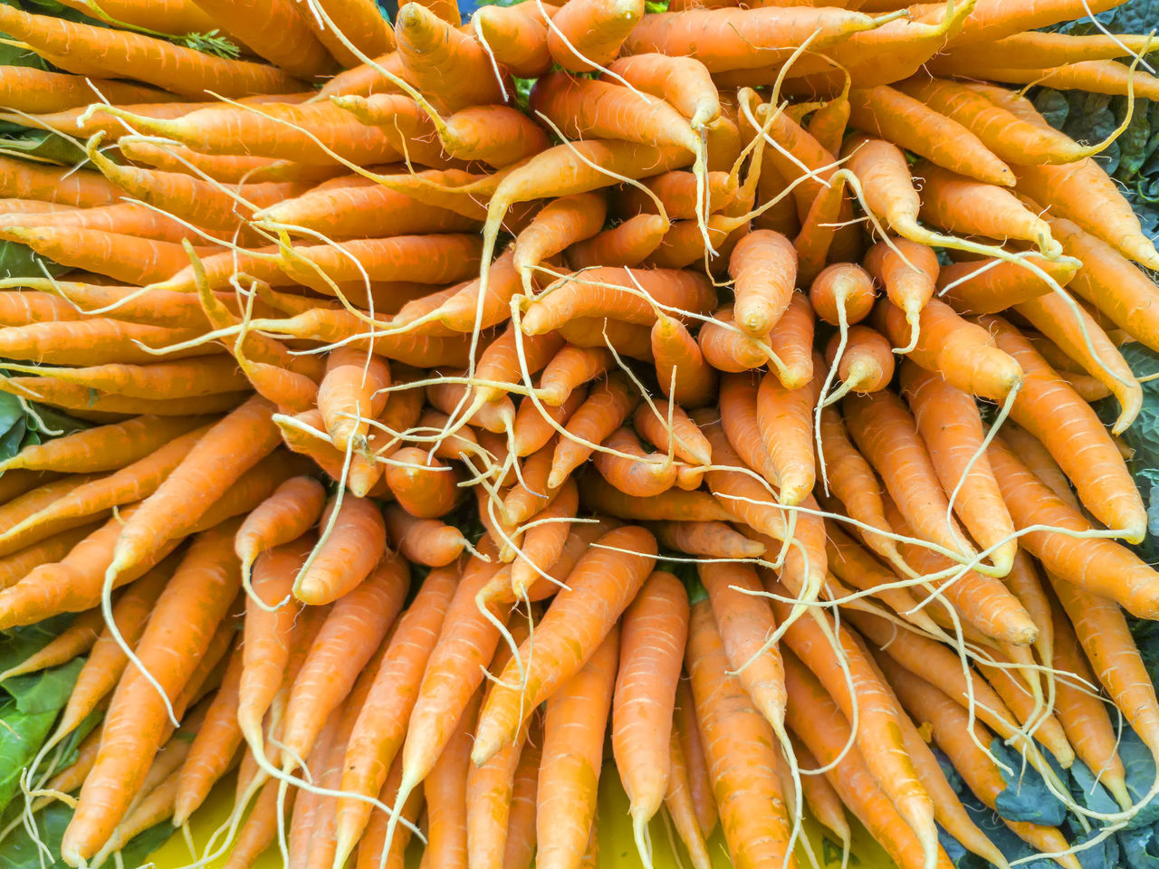 vegetable, food and drink, abundance, for sale, market, retail, large group of objects, full frame, food, no people, root, day, healthy eating, backgrounds, close-up, freshness, outdoors