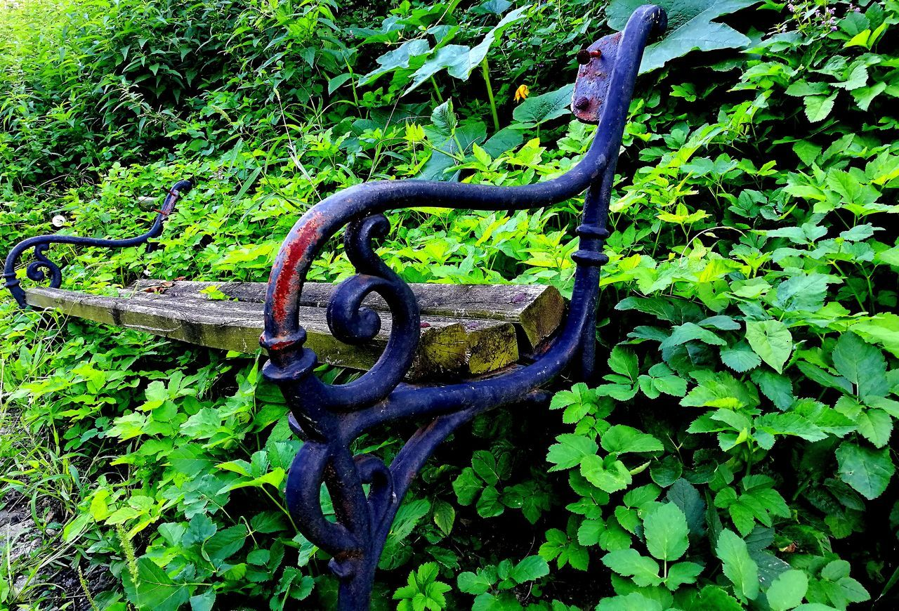 metal, green color, no people, outdoors, rusty, day, plant, nature, growth, close-up
