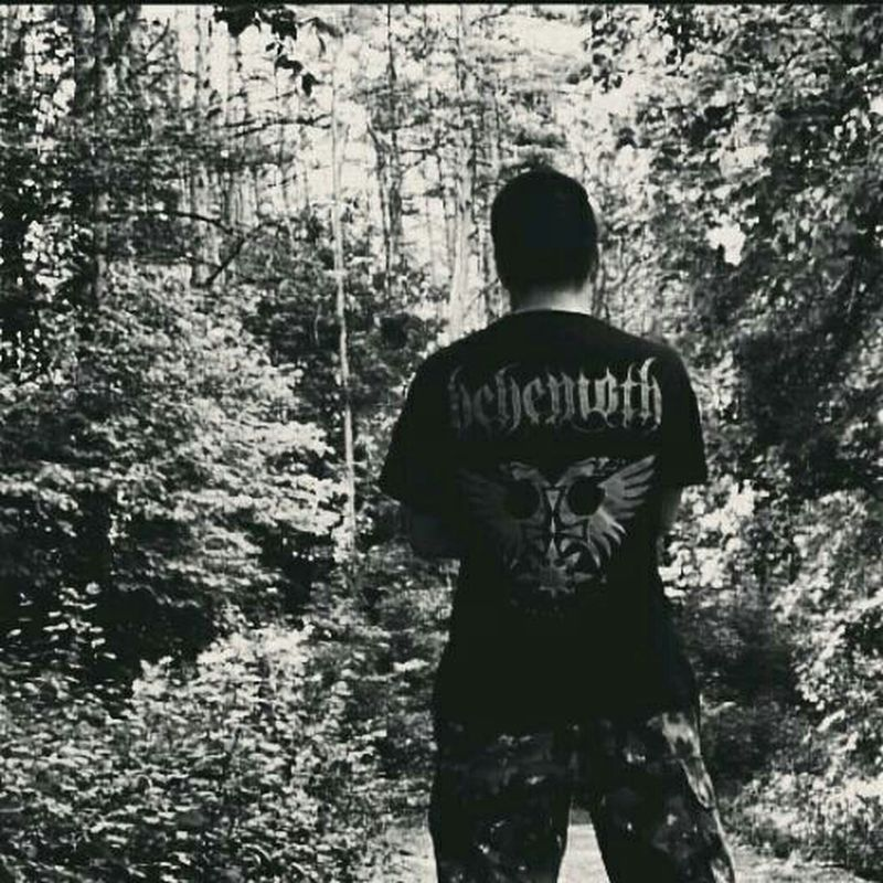 Behemoth Metal Forest Metalhead