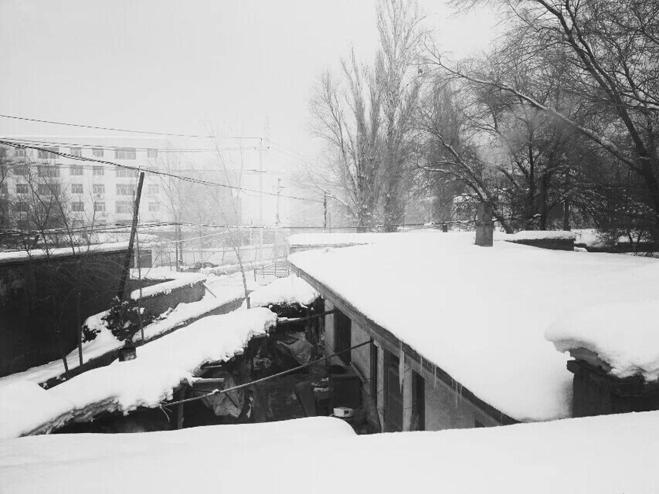 Snow ❄ 乌鲁木齐 Black & White Taking Photos Beautiful ♥ Enjoying Life EyeEm The Best Shots Eye For Photography Have A Nice Day♥ Happy Day