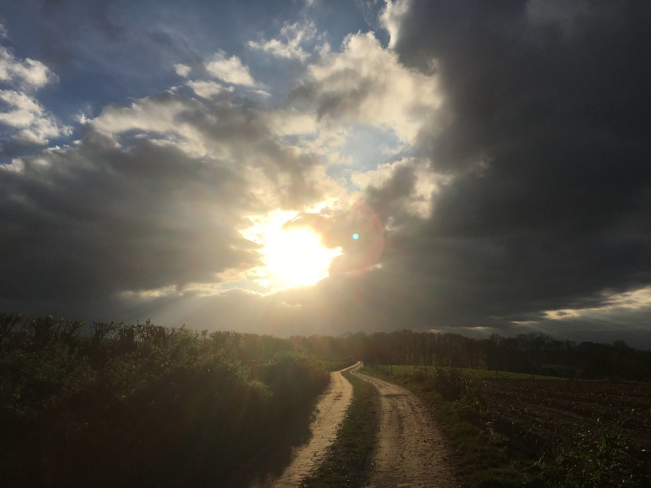 agriculture, nature, tranquil scene, cloud - sky, landscape, scenics, sun, field, tranquility, sunbeam, sky, sunset, beauty in nature, rural scene, no people, the way forward, outdoors, sunlight, growth, road, storm cloud, tree, day