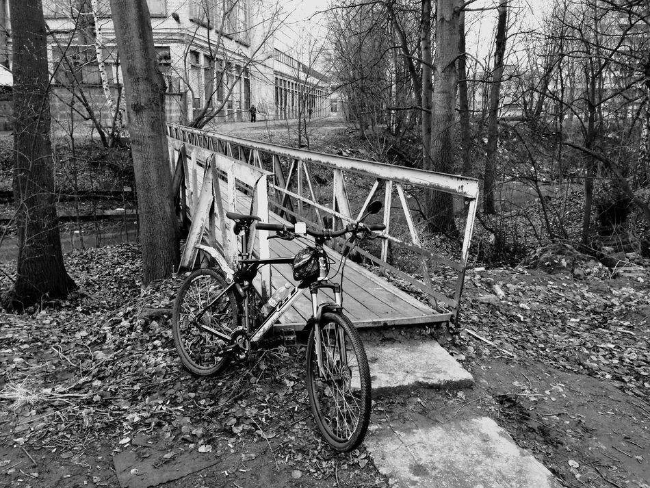 велосипед Spb Спб Spb Live Питер EyeEm Питер