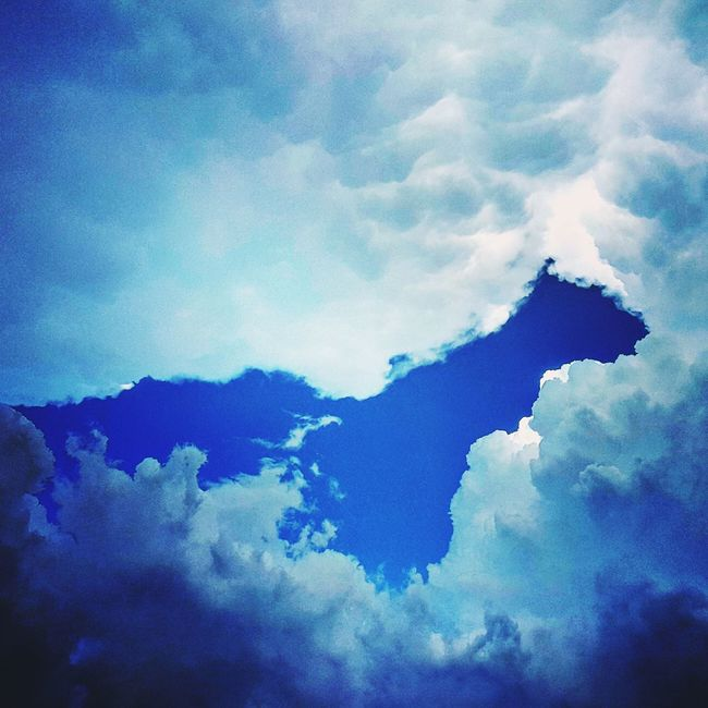 Clouds Clouds And Sky Cloud Formations Squirrel Whatdoyousee Cloudgazing