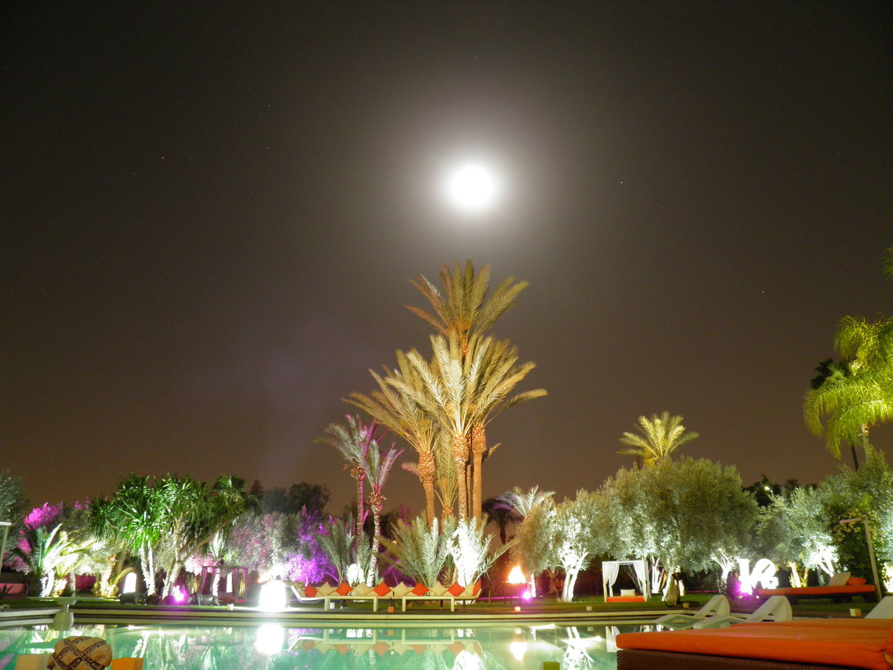 Celebration Chilling Mood Full Moon Garden Light Love Loving Moment Marrakech Night