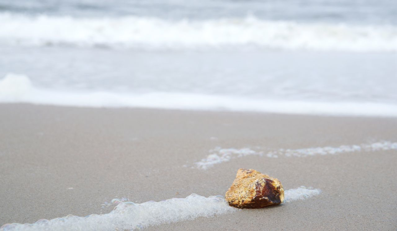 Raw amber at the beach Amber Beach Beauty In Nature Jewelry Nature Outdoors Raw Raw Am Sand Shore