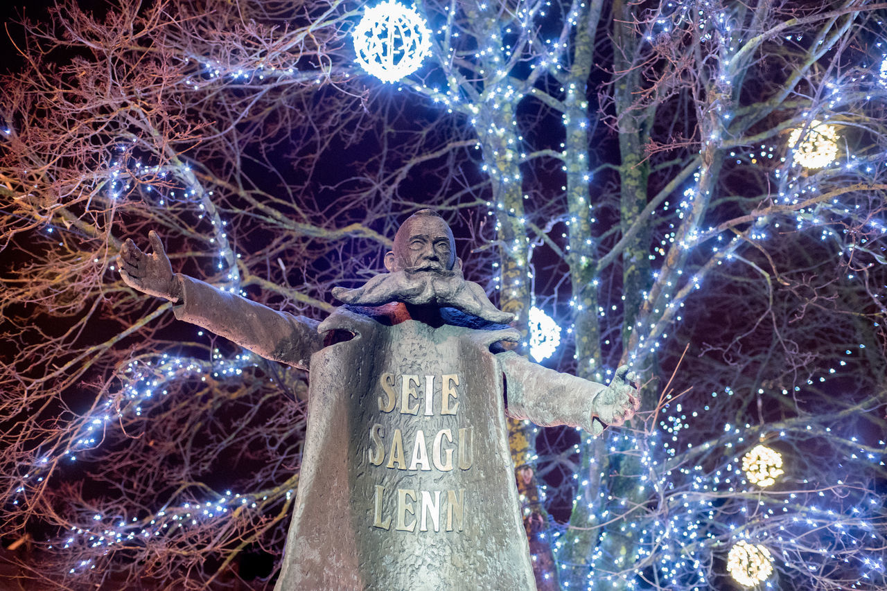 Christmas Christmas Decoration Christmas Ornament Founder Of Town Human Representation Low Angle View Night Night Lights Night Photography Nightphotography Nikolai Von Glehn No Leaves No People Nõmme Outdoors Sculpture Statue Tallinn Tree