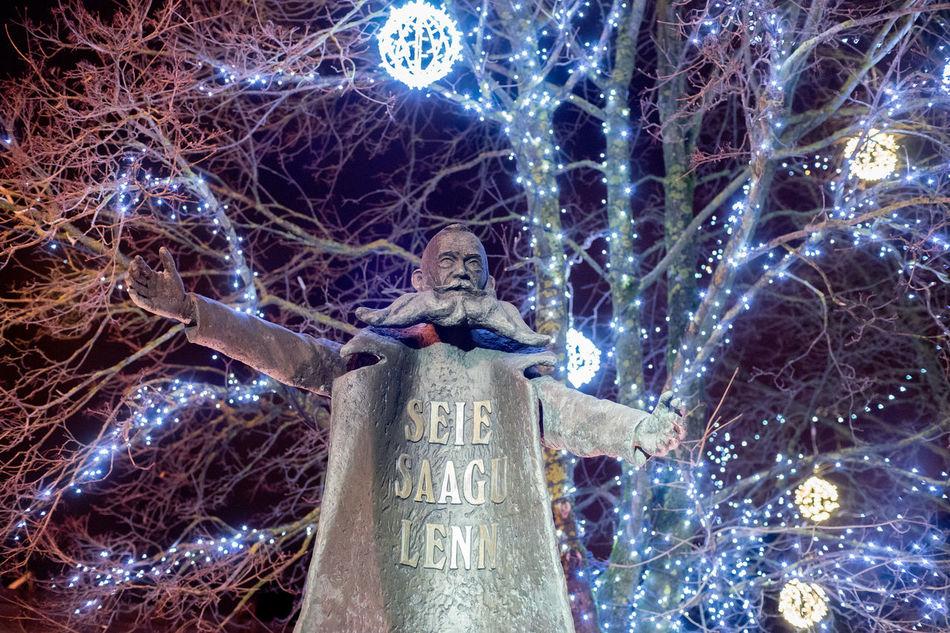Christmas Christmas Decoration Christmas Ornament Founder Of Town Human Representation Low Angle View Night Night Lights Night Photography Nightphotography Nikolai Von Glehn No Leaves No People Nõmme Outdoors Sculpture Statue Tallinn Tree