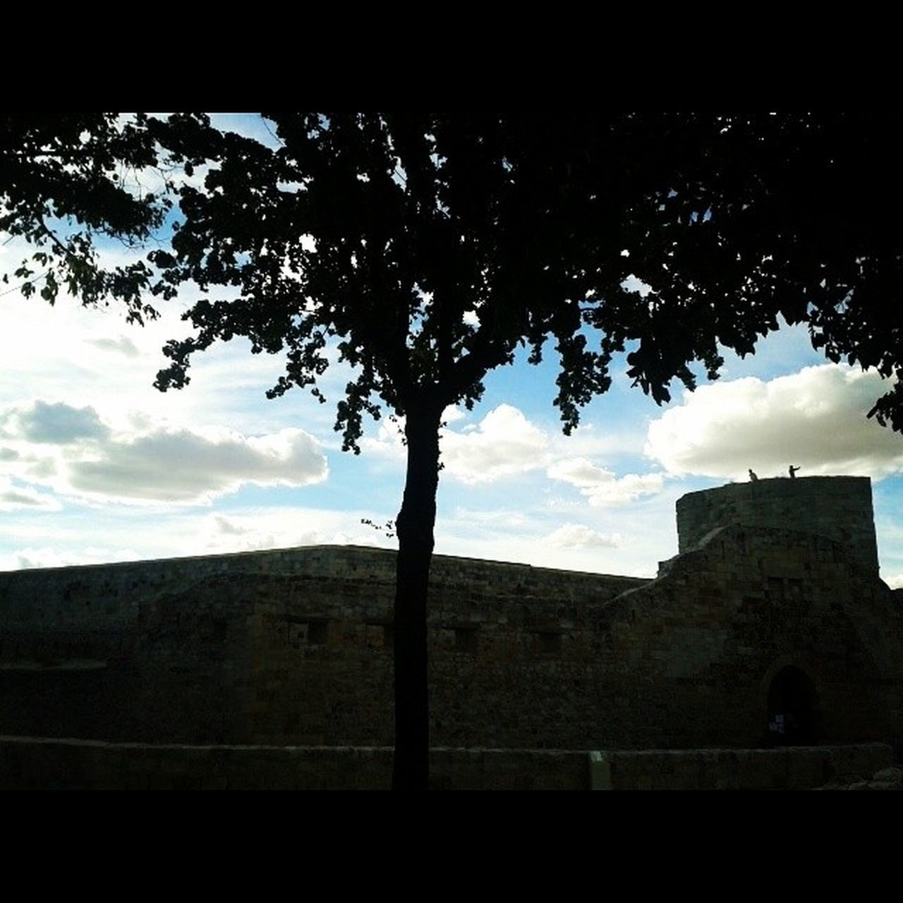 sky, history, no people, architecture, tree, day, nature, outdoors