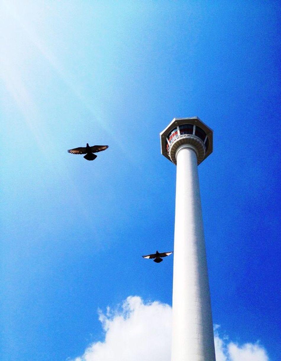 Busan, Korea! Fly To The Sky