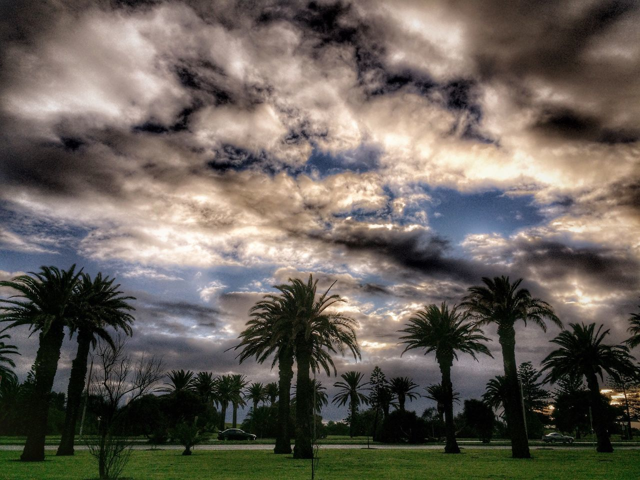 Tree_collection  Clouds And Sky Nature_collection Sky_collection Beach Beachphotography Cloud_collection