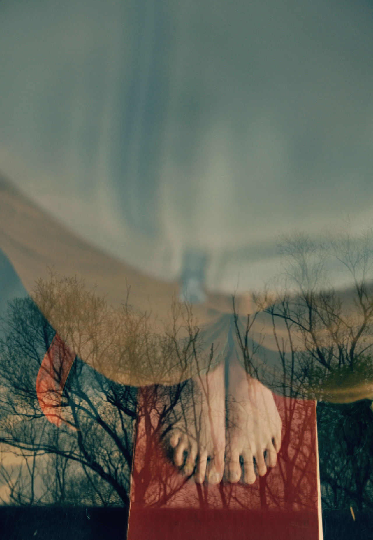 Double exposure of a figure from high angle view and trees Artistic Branches Calm Calmness Concept Conceptual Contemplation Creative Double Exposure Ecology Environment Feet Man And Nature Meditation Mindful Mindfulness Nature One With Nature Origin Peace Rooted Roots ThoughtProvoking Trees Wellbeing