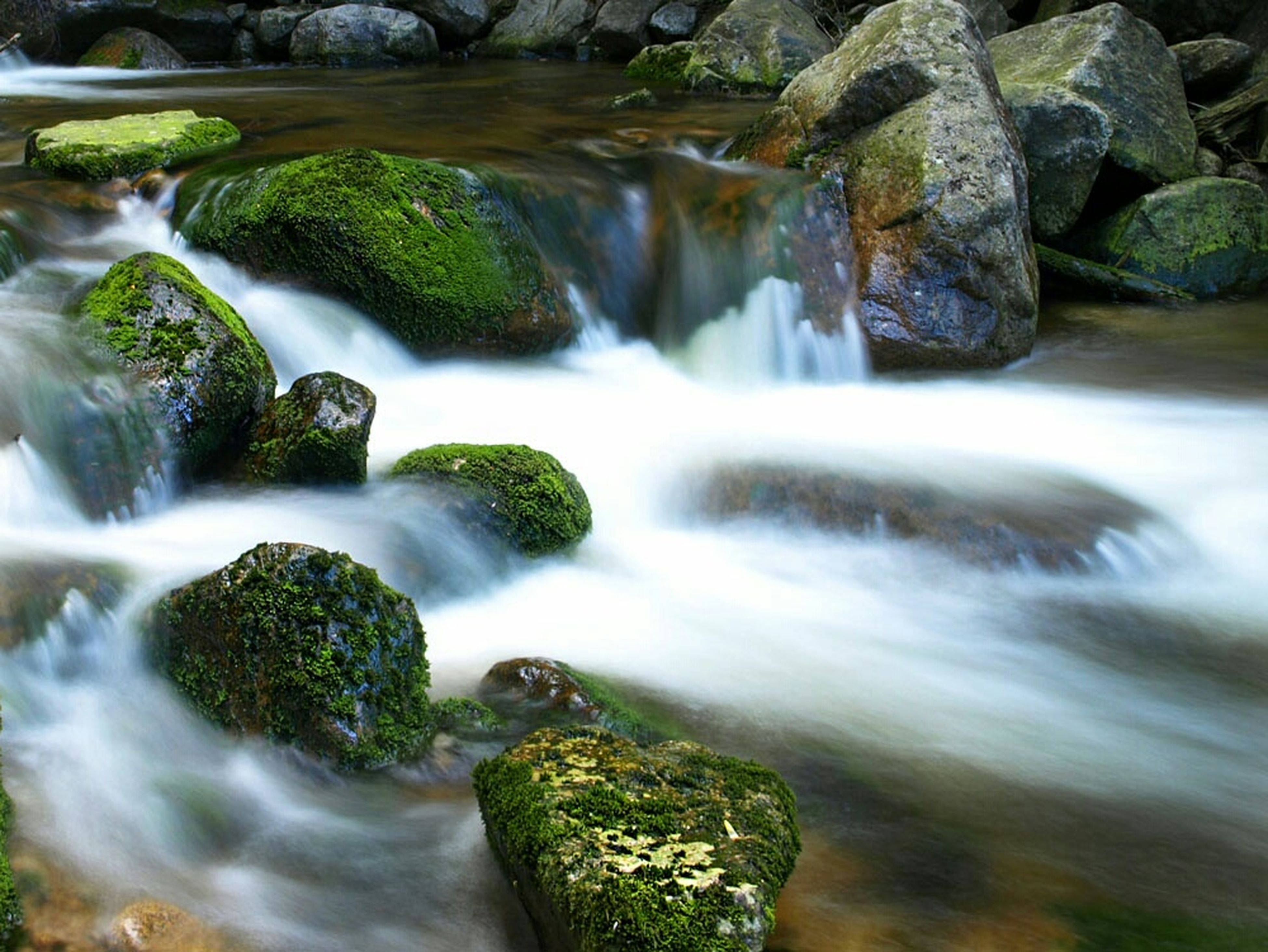 water, waterfall, flowing water, motion, long exposure, flowing, rock - object, beauty in nature, nature, scenics, forest, moss, blurred motion, rock, stream, environment, idyllic, rock formation, outdoors, plant