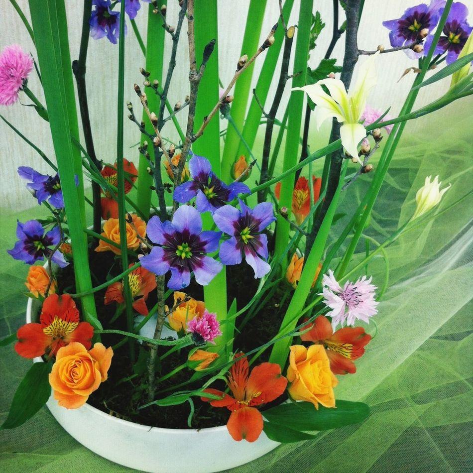 Flower Arrangement Flowerporn Flowers 花