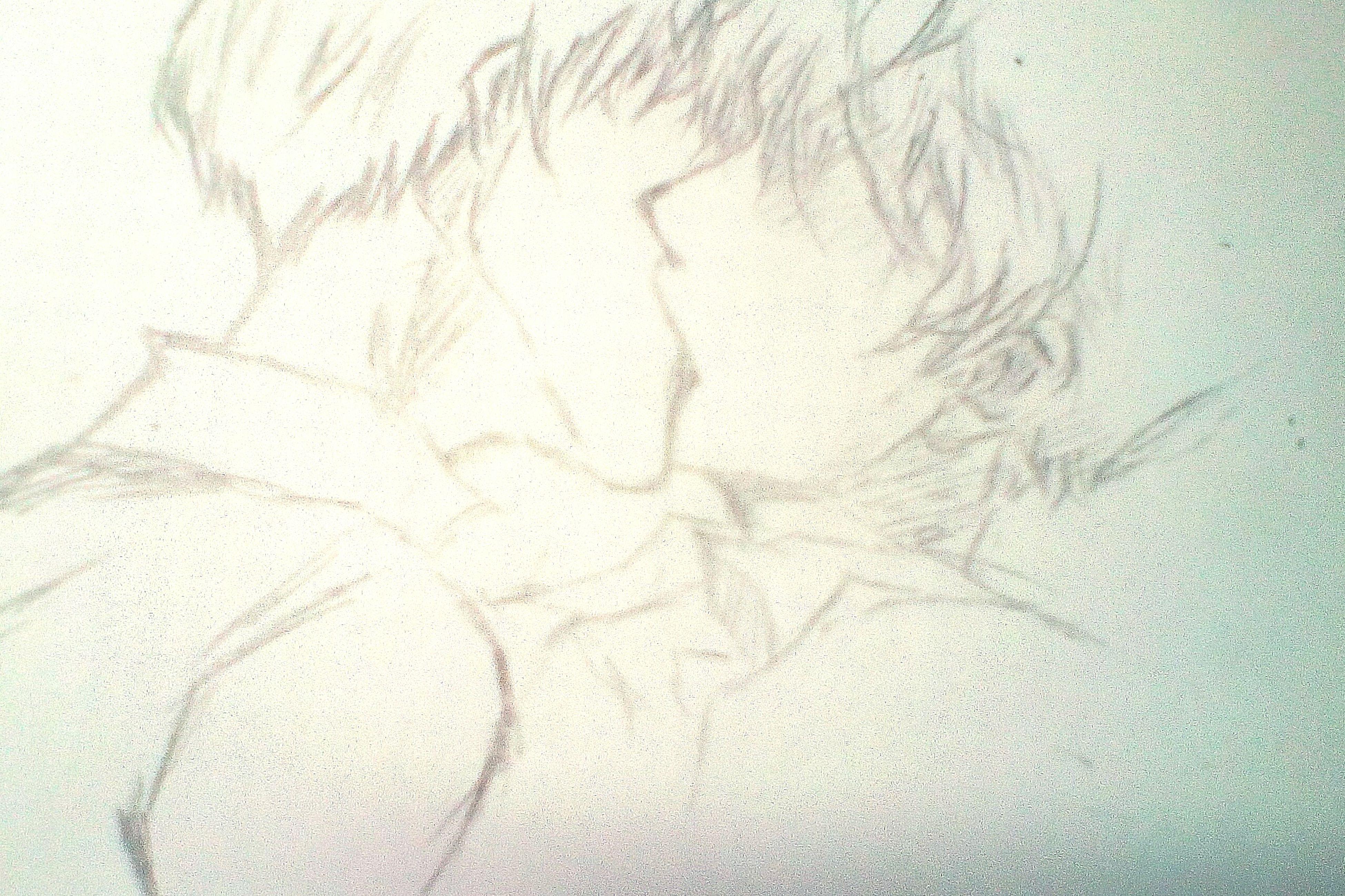 第一张。 动漫 First Eyeem Photo Boyslove 耽美 Love GayLove