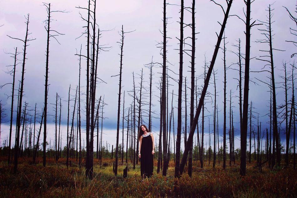 Beautiful stock photos of tree, Black Hair, Cloud, Content, Damaged