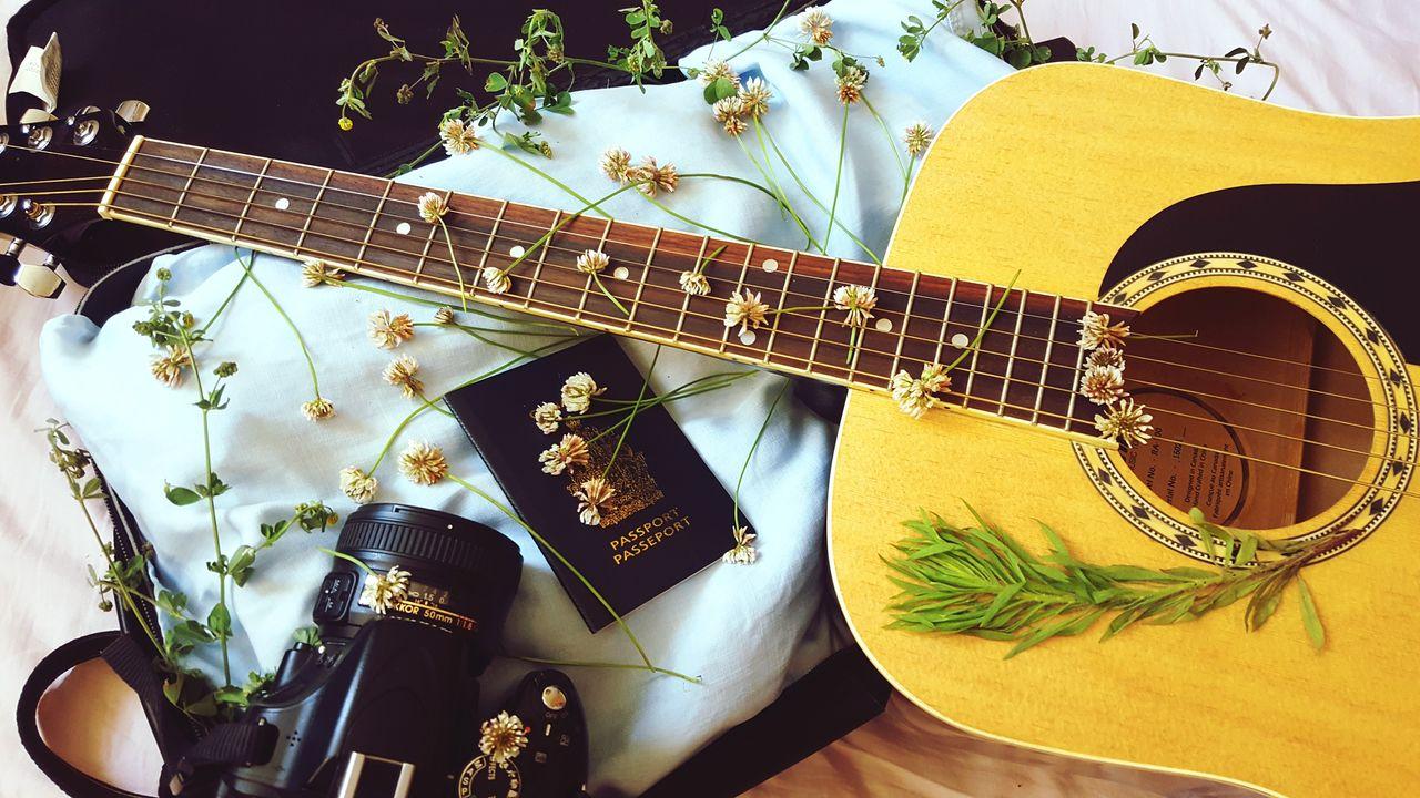 music, indoors, guitar, musical instrument, electric guitar, no people, musical instrument string, day, close-up
