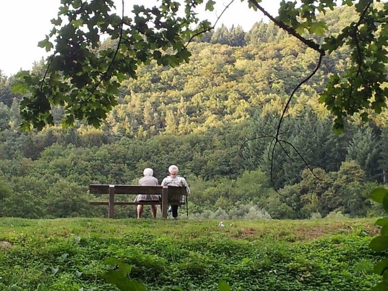 Lifestyles Two People Togetherness Nature Beauty In Nature Simple Living Green Color Tranquility Older Couple looking into the future Looking Back On Life green nature Outdoors Idyllic Forest Park Forest Walk Forest View Forest Photography Waiting... Sitting Outside Sitting In The Park Sitting On A Bench Old Age, Fragile, Vulnerable Olden Days Street Photography Empty Places Beauty In Nature Relaxation