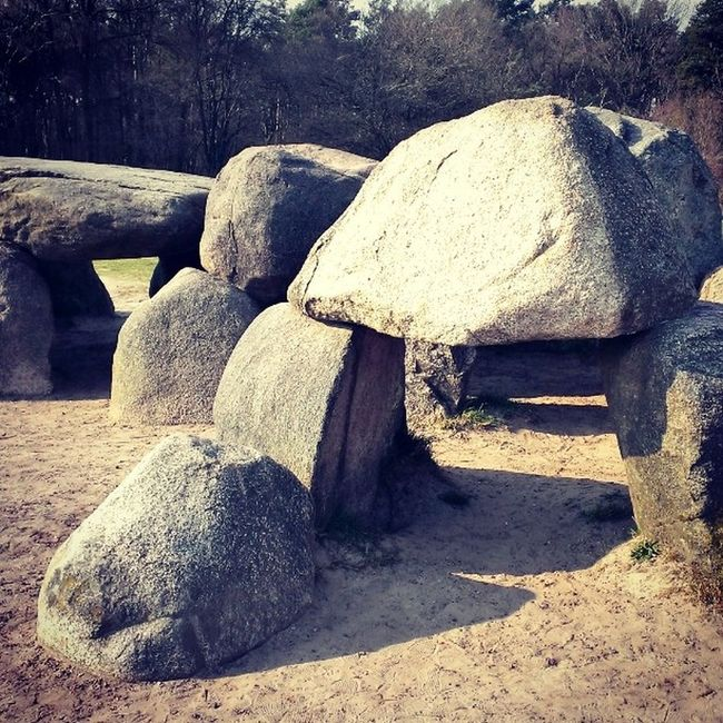 Hunebed Havelte Hunebed Stone Grave History Stoneage Architecture Woods Havelte Bjorngruppen Dutch