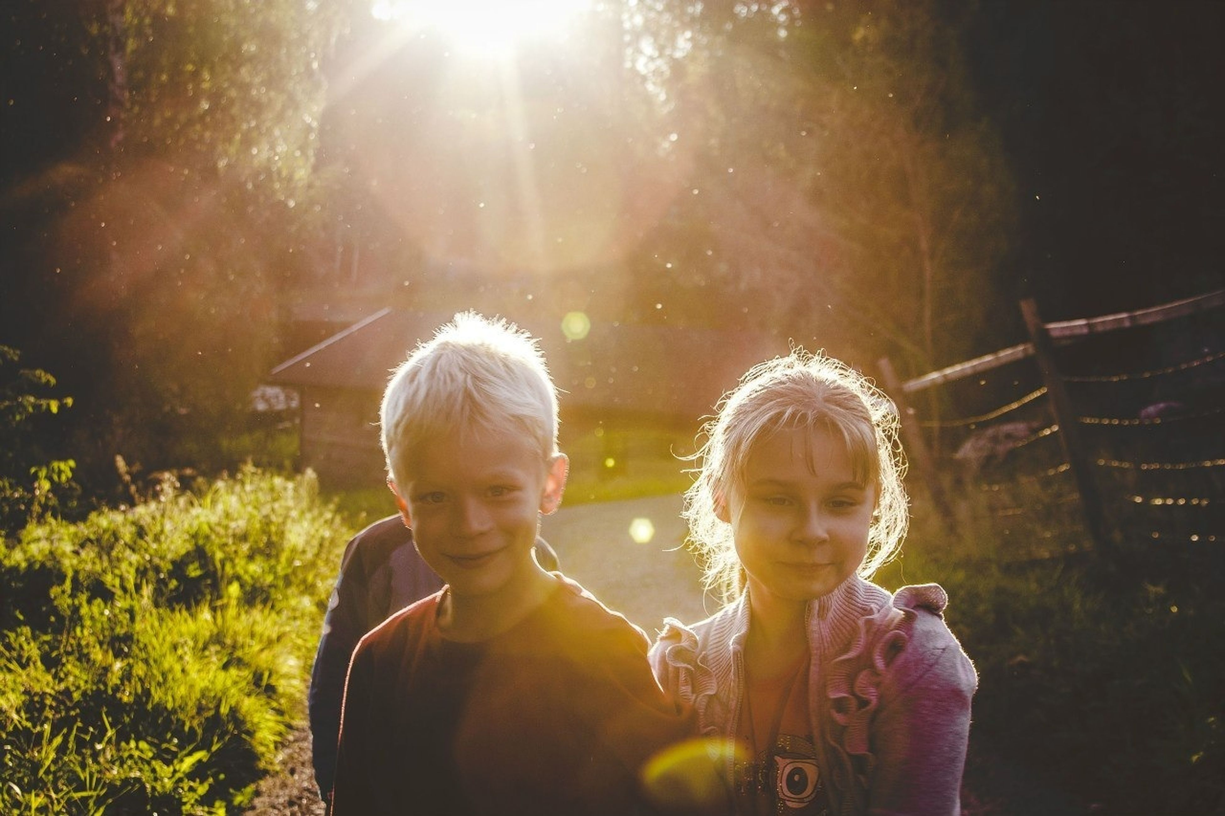 lifestyles, leisure activity, childhood, person, boys, casual clothing, elementary age, togetherness, girls, bonding, tree, love, looking at camera, sunlight, portrait, front view, smiling