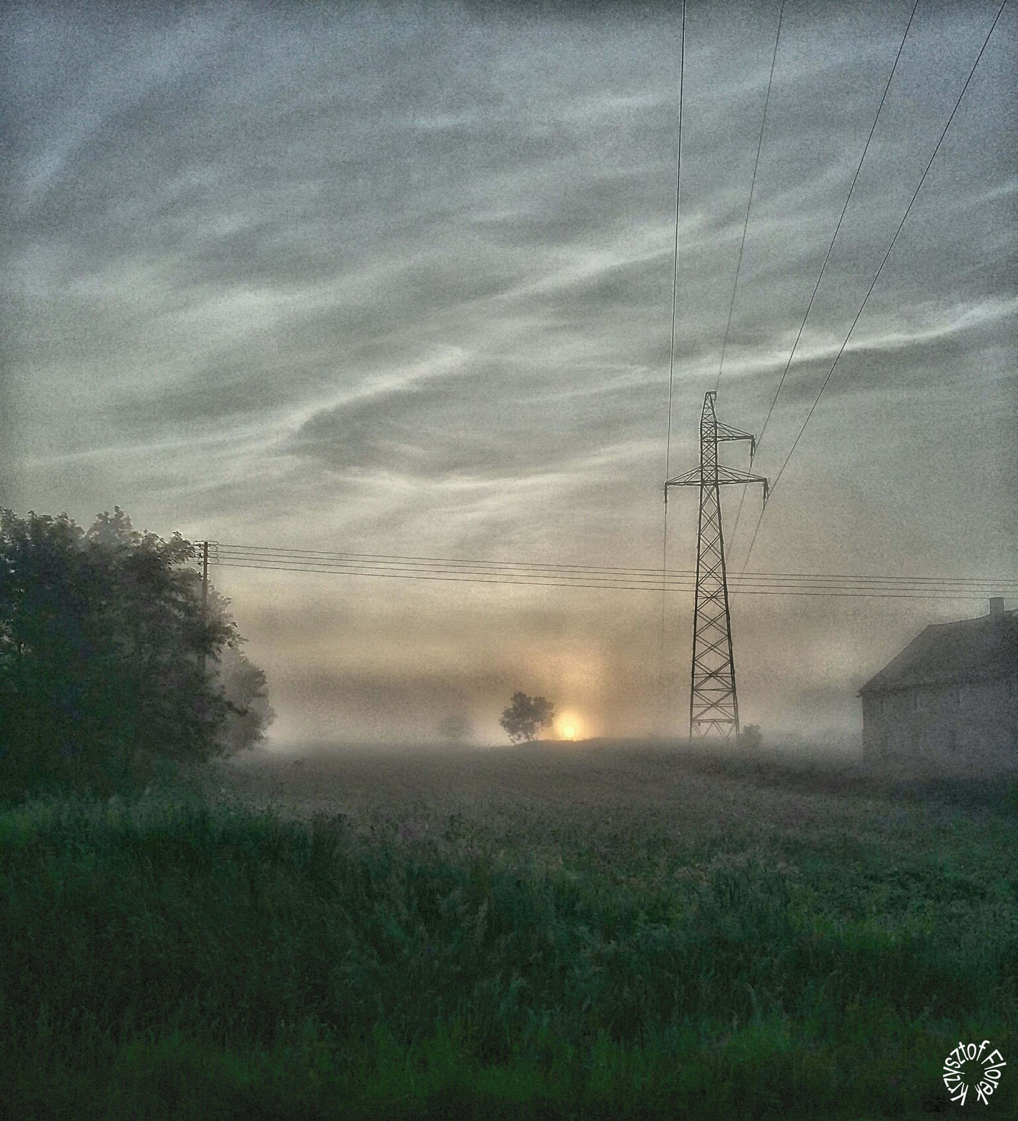 power line, electricity pylon, electricity, field, sky, tranquility, tranquil scene, power supply, grass, nature, landscape, beauty in nature, scenics, tree, growth, fuel and power generation, cable, cloud - sky, plant, weather