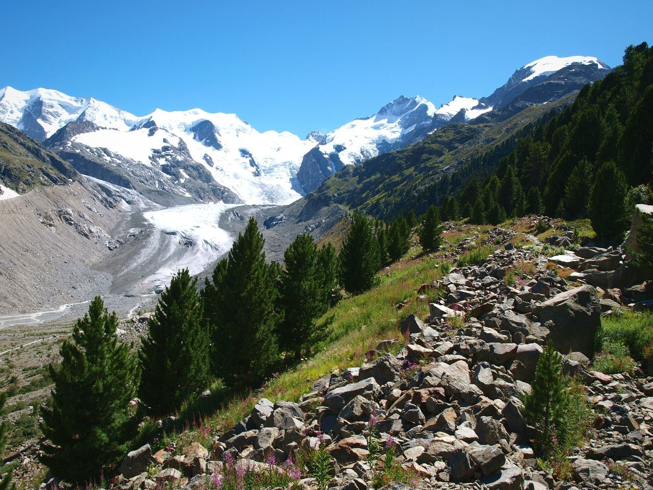 Piz Bernina Swiss Alps Morteratsch Glacier Walk