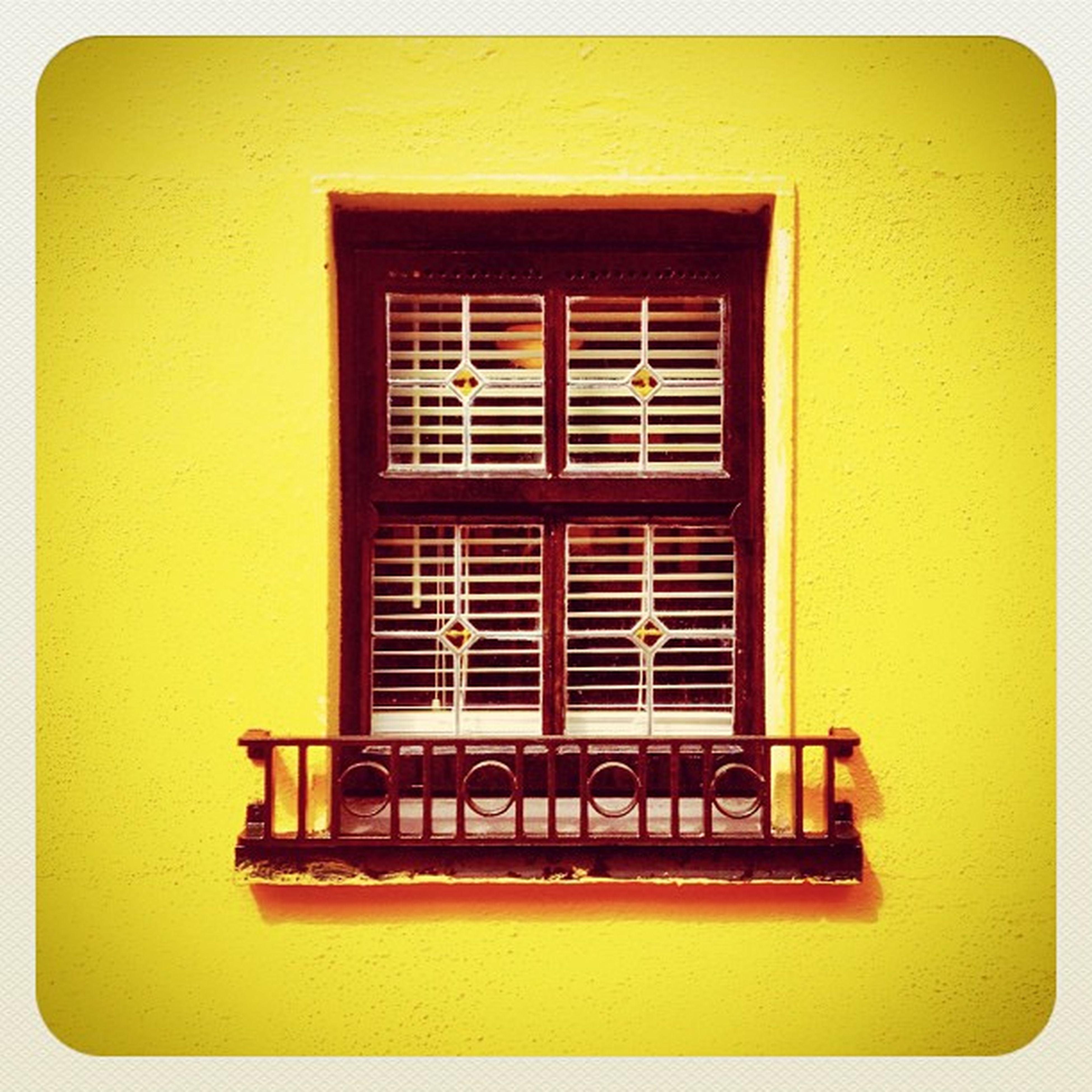 Window #earlybirdlove #ebstyles_gf #gf_ire #swords #ireland #window Window Ireland Swords Earlybirdlove Ebstyles_gf Gf_ire