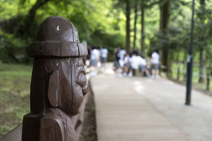 View of Jeju Jeolmul Natural Recreation Forest in Jeju Island, South Korea Close-up Day Focus On Foreground Harubang Human Representation JEJU ISLAND  Jeolmul Natural Recreation Forest Nature No People Outdoors Sculpture Statue Tree