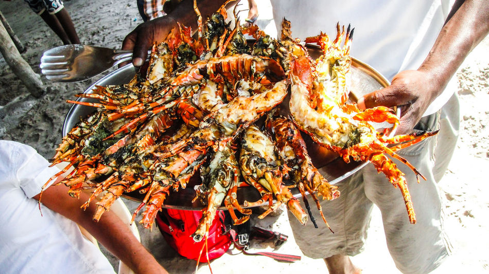 Beautiful stock photos of lobster, Beach, Casual Clothing, Cooked, Day