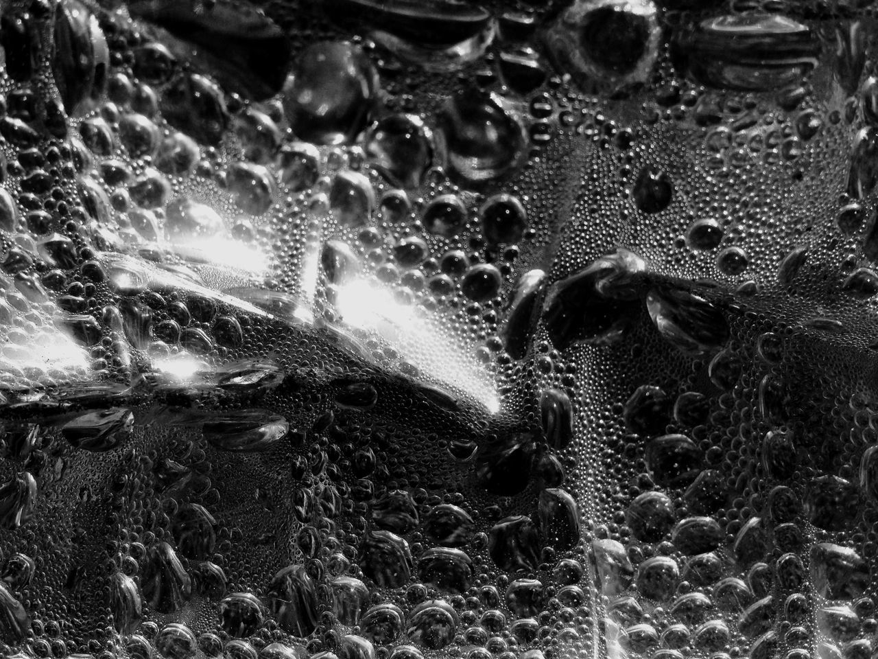 Condensation Macro Condensation Waterdrops IPhoneography Blackandwhite Bubbles Streetphotography