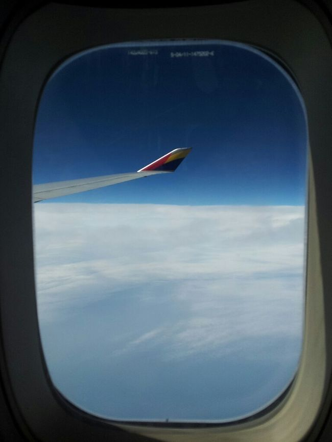 Cruising No Filter Frame It! Asiana Airlines