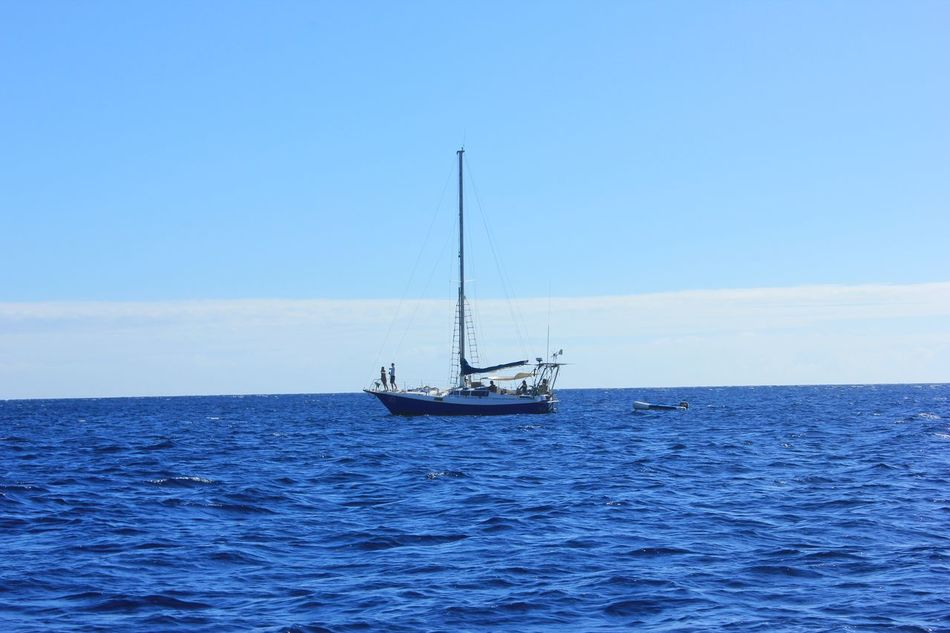 Beautiful stock photos of sailing, Beauty In Nature, Blue, Boat, Copy Space