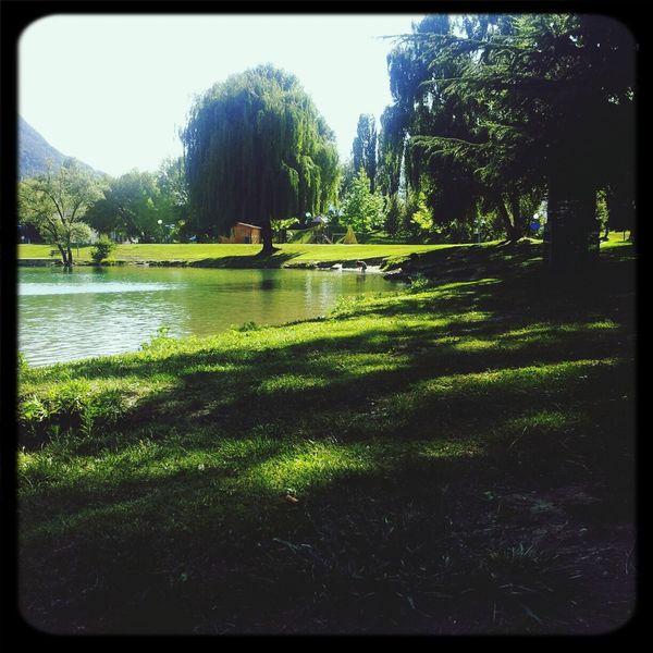 Paradise Green ?