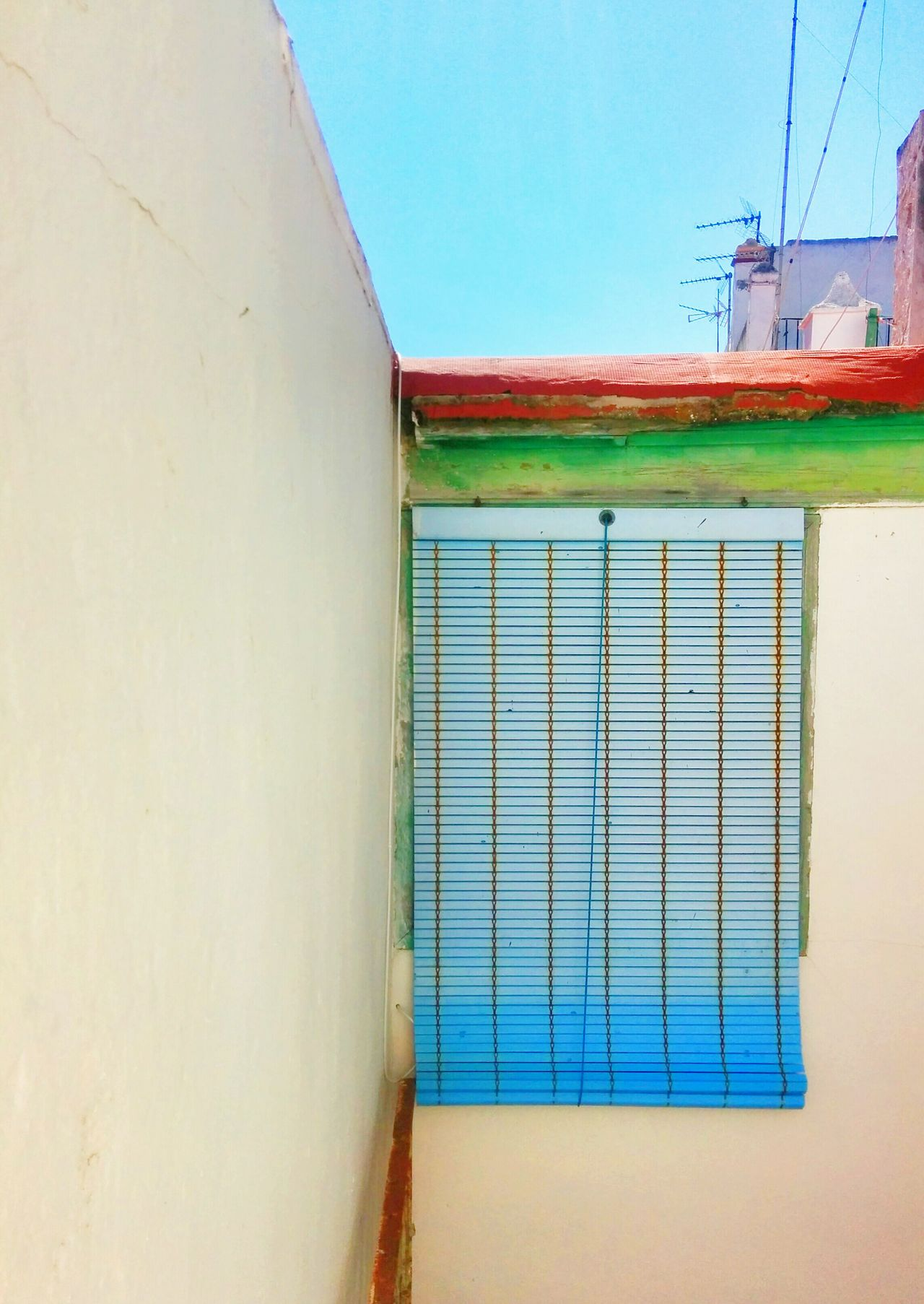 Colorful Blinds View Out My Window RGB