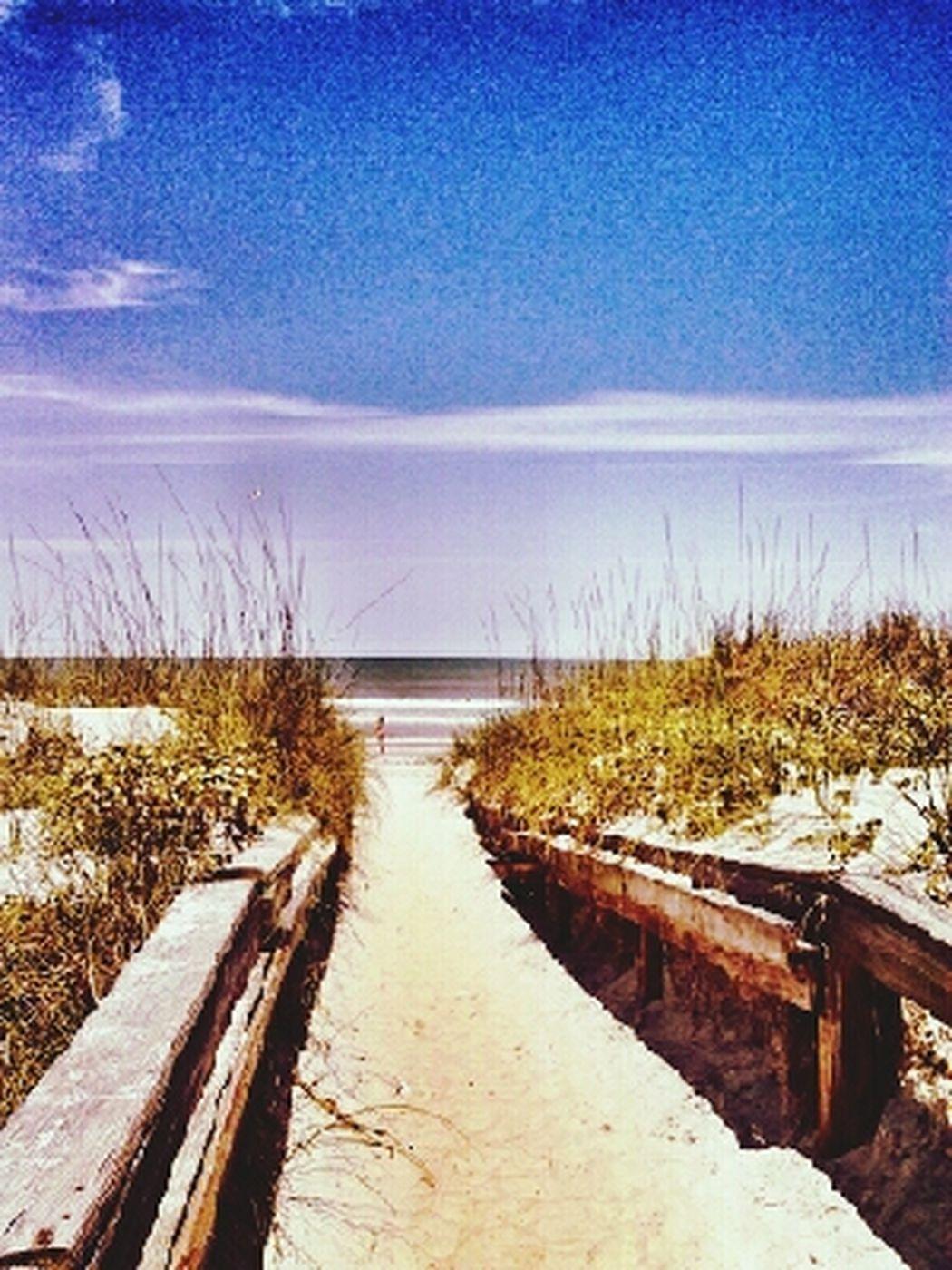 Beach Life Streamzoofamily Ocean View Sand & Sea