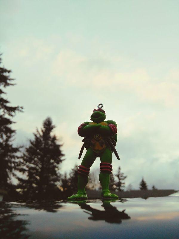 Found my childhood super hero Close-up EyEmNewHere Teenage Mutant Ninja Turtles  Teenagemutantninjaturtles Colorful Sky
