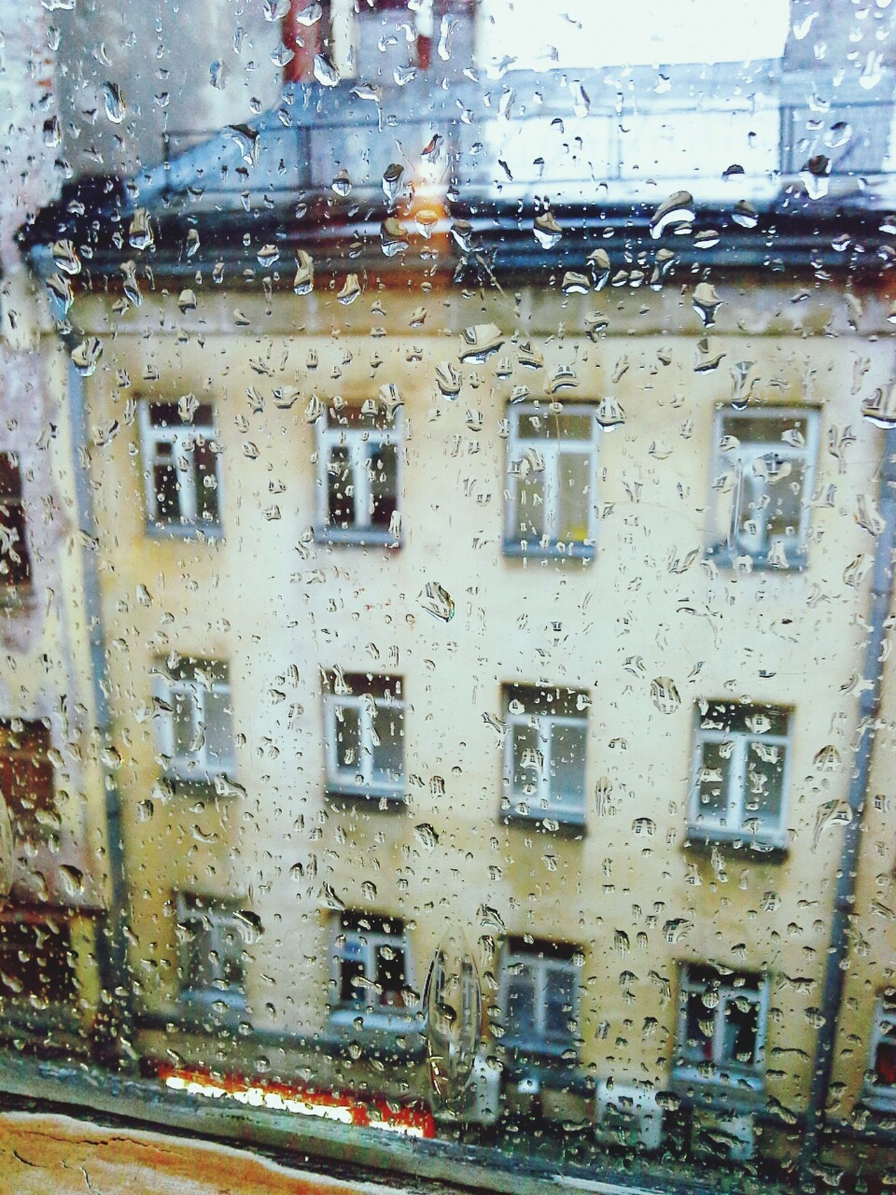 Rain Saint Petersburg загородный проспект Check This Out