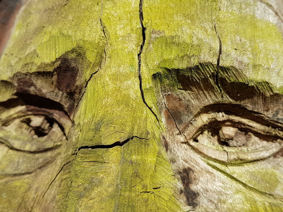 The eyes have it. Tree Art Tree Trunk Tree Trunk Art Wise Mans Face Close-up Full Frame Textured  Nature No People Backgrounds Growth Nature If You Go Down To The Woods Today.. Beauty Of Nature Walking In The Woods Walk Sights Scenics