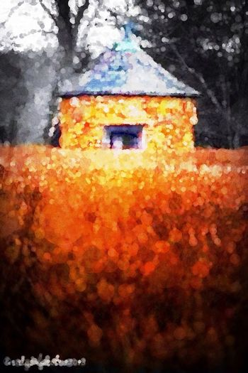 Gladly Trapped in Monet's Mind Fields Percolator Tribute To Impressionism
