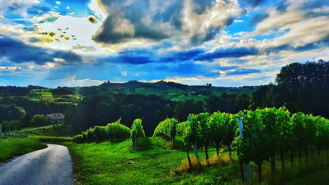 Feel The Journey ArtWork Amazing_captures Clouds And Sky Trees Skyporn Taking Photos Most Beautiful Place On Earth❤ Croatia Thebest_capture 2016 Sky Clouds Nature Amazing Loveit♥ Hills Grass EyeEm Nature Lover Wood Travel Photography Showcase June