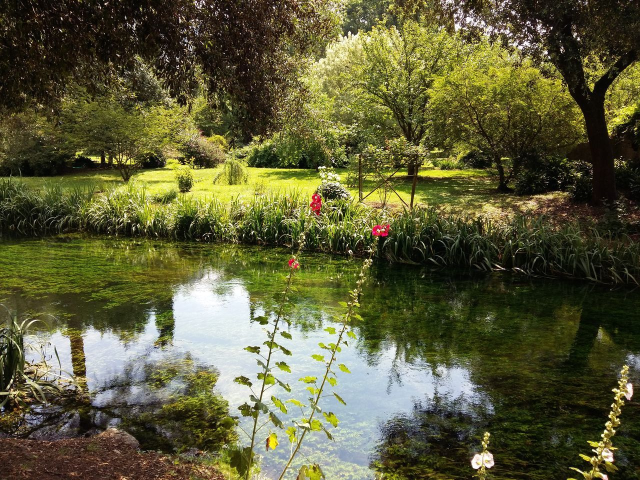 Giardino Di Ninfa Norma Italy Lazio Lazio,Italy Garden Photography Garden Flowers Feel The Journey Flower River