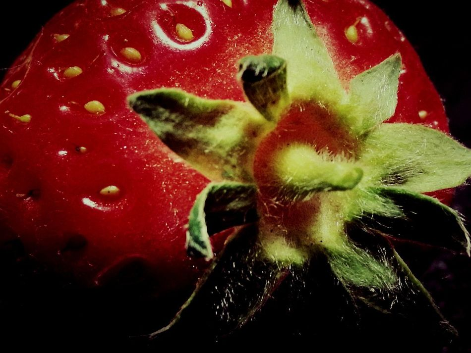 Fruit No People Red Color Followme Nature Beauty In Nature 🍓strawberry 🍓garden Freshness