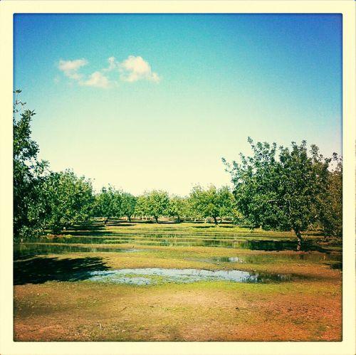 De paseo campero por Tempu.