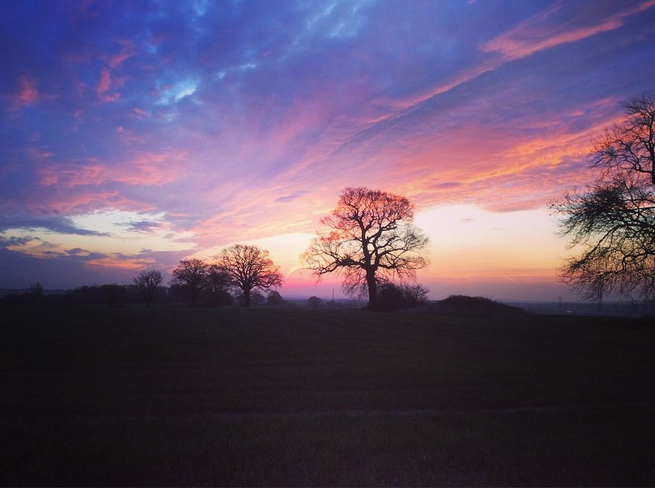Stunning sunrise in Essex Rettendon Sunrise Sunrise_sunsets_aroundworld Colour Splash Check This Out Landscapes With WhiteWall EyeEm Gallery EyeEm Nature Lover Showcase April