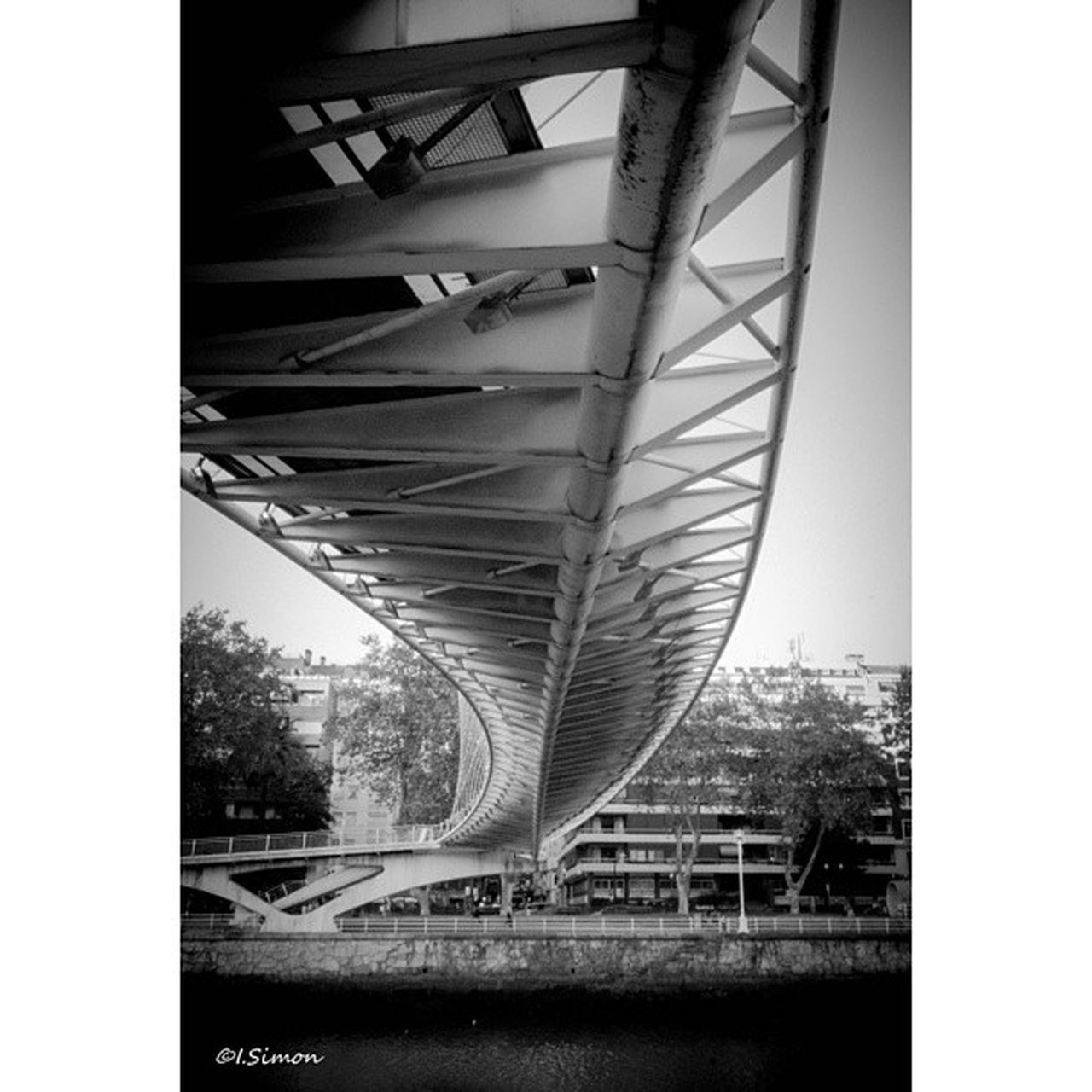 architecture, bridge - man made structure, connection, built structure, no people, outdoors, transportation, underneath, day, bridge, clear sky, tree, city, steel, building exterior, sky