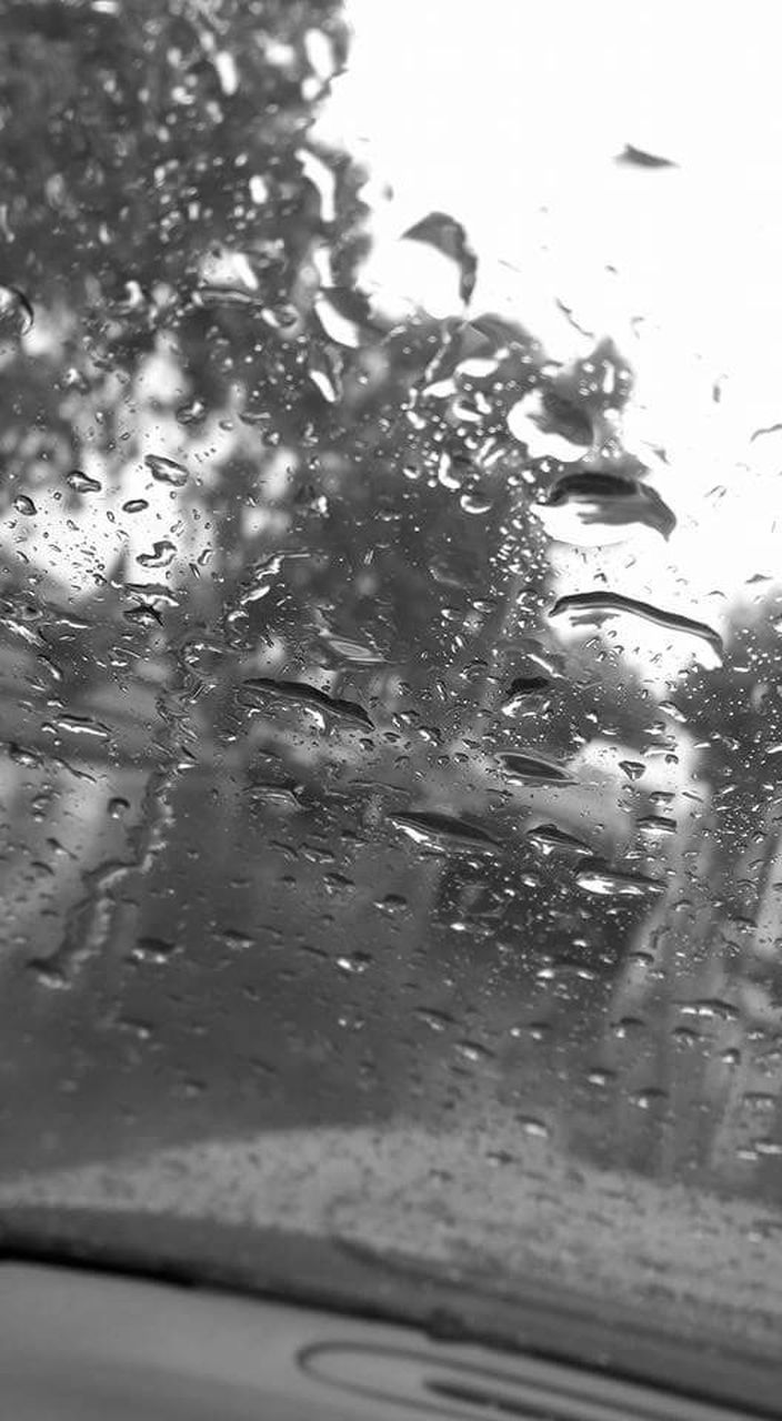 car, vehicle interior, wet, land vehicle, transparent, car interior, mode of transport, drop, glass - material, water, rain, transportation, rainy season, window, raindrop, windshield, no people, close-up, day, travel, looking through window, animal themes, nature, indoors, sky, car wash